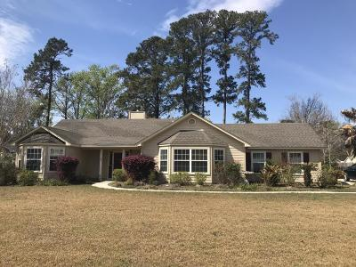 Beaufort County Single Family Home For Sale: 1003 Wolverine Drive