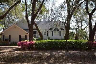 Beaufort County Single Family Home For Sale: 87 Lost Island Road