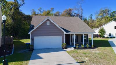 Beaufort SC Single Family Home For Sale: $249,000
