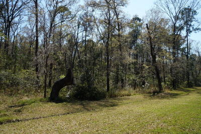 Seabrook Residential Lots & Land For Sale: 4 Stephens Path