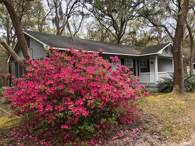 Beaufort County Single Family Home For Sale: 19 American Avenue