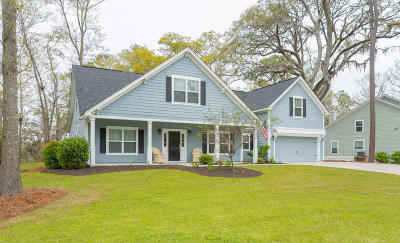 Beaufort County Single Family Home For Sale: 3 Flamingo Cove
