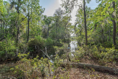 Beaufort County Single Family Home For Sale: 552 Sams Point Road