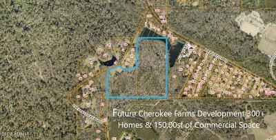 Beaufort County Residential Lots & Land For Sale: 31 Cherokee Farms Road
