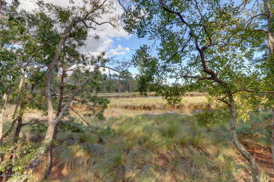 Lot 11 Telfair Plantation, Hardeeville, SC, 29927, Hardeeville Home For Sale
