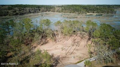 Beaufort County Residential Lots & Land For Sale: 3 Cattail Court