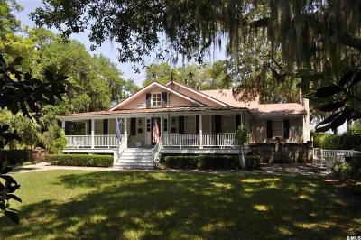 Beaufort Single Family Home For Sale: 509 Pinckney Street