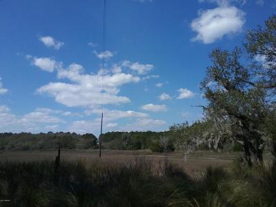 Beaufort, Beaufort Sc, Beaufot, Beufort Residential Lots & Land For Sale: 16c Red Bluff Estates