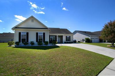 Ridgeland Single Family Home For Sale: 51 Regiment Street