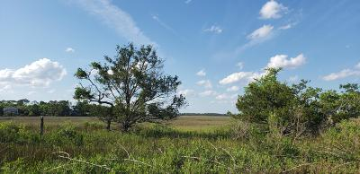 Fripp Island Residential Lots & Land For Sale: 358 Sea Bass Drive