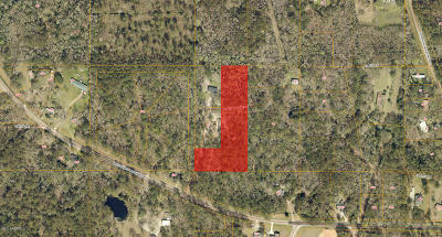 Beaufort, Beaufort Sc, Beaufot, Beufort Residential Lots & Land For Sale: 20 David Wayne Lane