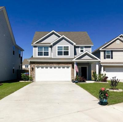 Beaufort County Single Family Home For Sale: 176 Mission Way