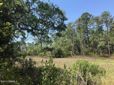 Ridgeland Residential Lots & Land For Sale: Lot 40 Pilot Point Road