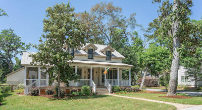 Beaufort Single Family Home For Sale: 163 Gautier Place
