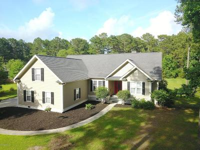 Beaufort, Beaufort Sc, Beaufot Single Family Home For Sale: 203 Green Winged Teal Drive S