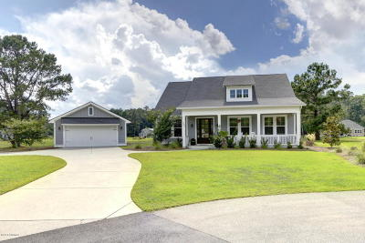 Beaufort County Single Family Home For Sale: 507 Jetfire Point