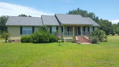 Beaufort County Single Family Home For Sale: 287 Perryclear Drive
