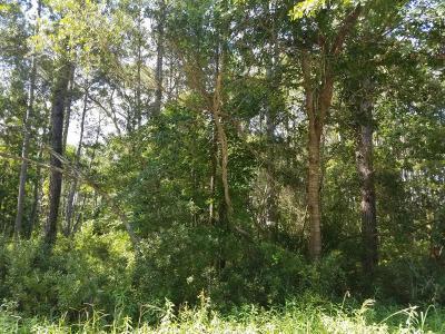 Beaufort County Residential Lots & Land For Sale: 23 Braeburn Lane