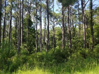 Beaufort County Residential Lots & Land For Sale: 25 Braeburn Lane