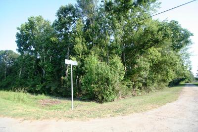 Beaufort, Beaufort Sc, Beaufot, Beufort Residential Lots & Land For Sale: Bruce K Smalls Drive