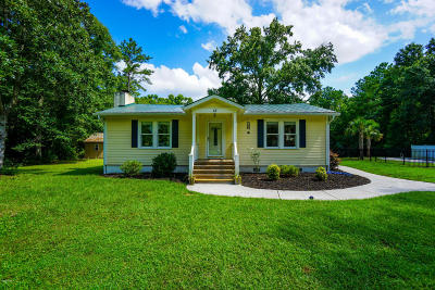 Beaufort County Single Family Home Under Contract - Take Backup: 12 Wildcat Lane