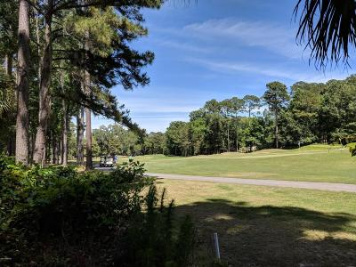 Okatie Residential Lots & Land For Sale: 51 Winding Oak Drive