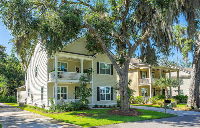 Beaufort, Beaufort Sc, Beaufot, Beufort Single Family Home For Sale: 132 Wrights Point Drive