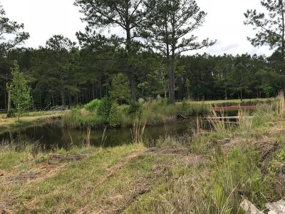 Ridgeland Residential Lots & Land For Sale: 350 Roseland Road