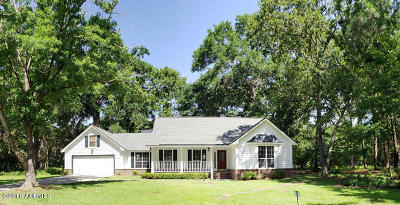 Beaufort County Single Family Home For Sale: 28 Egret Drive