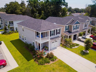 Beaufort County Single Family Home For Sale: 85 Starshine Circle