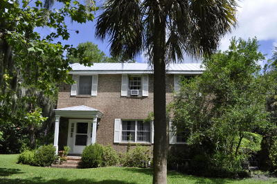Beaufort Single Family Home For Sale: 809 Hamilton Street