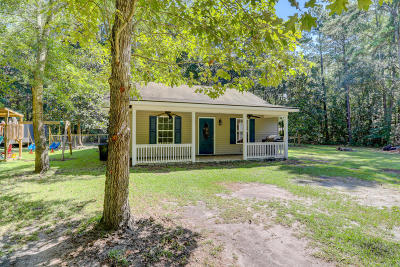 Ridgeland Single Family Home For Sale: 272 Tracy Drive