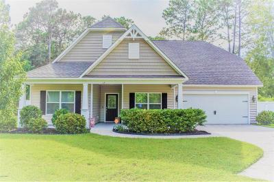 Beaufort County Single Family Home For Sale: 17 St James Circle