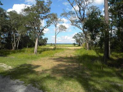 Ridgeland Residential Lots & Land For Sale: 90 Cassique Creek Drive