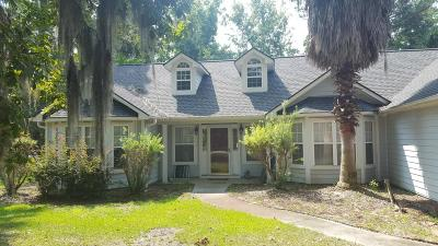Beaufort Single Family Home For Sale: 1053 Otter Circle