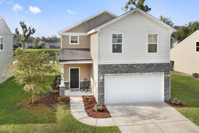 Beaufort County Single Family Home Under Contract - Take Backup: 41 Cedar Creek Circle