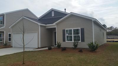 Beaufort County Single Family Home For Sale: 26 Chestnut Street