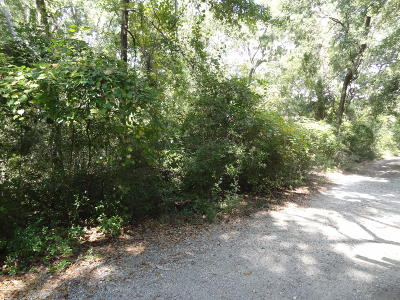 Beaufort County Residential Lots & Land For Sale: 1 Loggerhead Trail