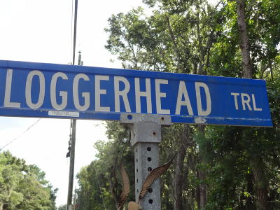 Beaufort County Residential Lots & Land For Sale: 6 Loggerhead Trail