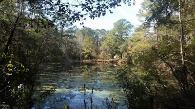 Beaufort, Beaufort Sc, Beaufot, Beufort Residential Lots & Land For Sale: Pine Grove Road
