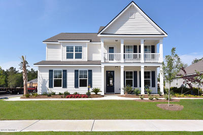 Beaufort County Single Family Home For Sale: 4100 Sage Drive