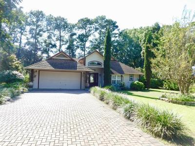 Beaufort, Beaufort Sc, Beaufot, Beufort Single Family Home For Sale: 26 Chesterfield Drive