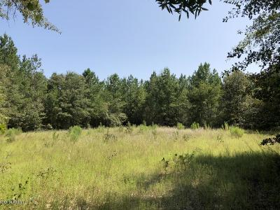 1077 Waters Ferry Road, Orangeburg, SC, 29115, Adjacent Counties Home For Sale