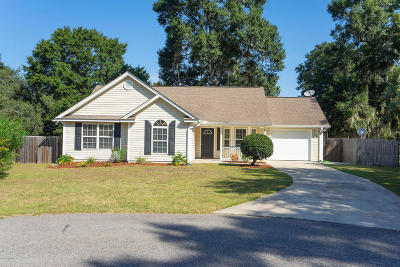 Beaufort County Single Family Home For Sale: 8 Mary Elizabeth Drive