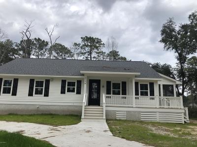 Beaufort Single Family Home For Sale: 3009 Broad River Drive