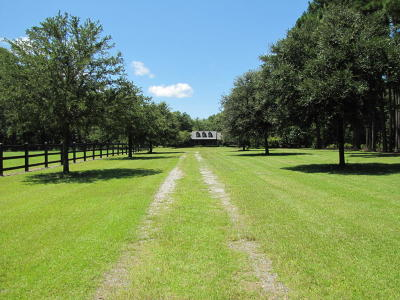 399 Field Crest, Cope, SC, 29038, Adjacent Counties Home For Sale