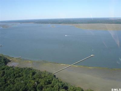 Beaufort County Residential Lots & Land For Sale: 2 Black Skimmer Court