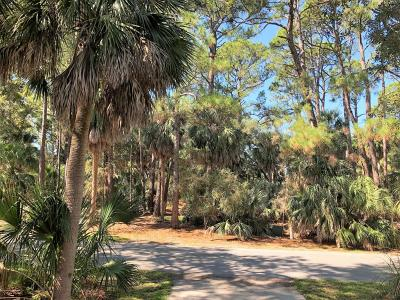 Fripp Island Residential Lots & Land For Sale: 460 Porpoise Drive