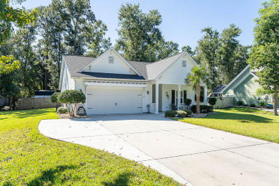 Beaufort County Single Family Home For Sale: 31 Laughing Gull Drive