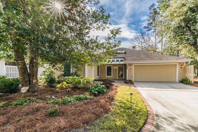 Beaufort County Single Family Home For Sale: 490 Bb Sams Drive